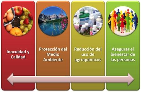 Buenas Practicas Agricolas  Curso Buenas Practicas Agrícolas