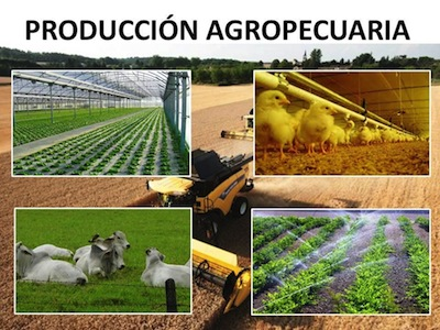 El SENA convoca al sector Agropecuario