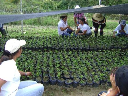 Carreras SENA para fomentar el Agro